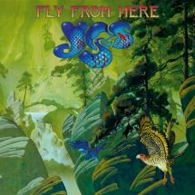 Yes : Fly from here
