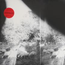 Godspeed You! Black Emperor : Asunder, Sweet And Other Distress