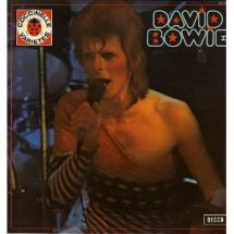 David Bowie : Collection Coccinelle